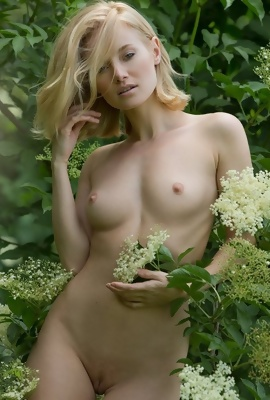 Blonde Gabi nude art pics in the nature